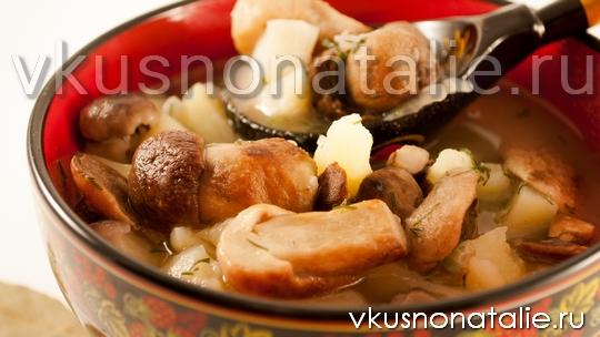грибной суп в мультиварке из белых грибов