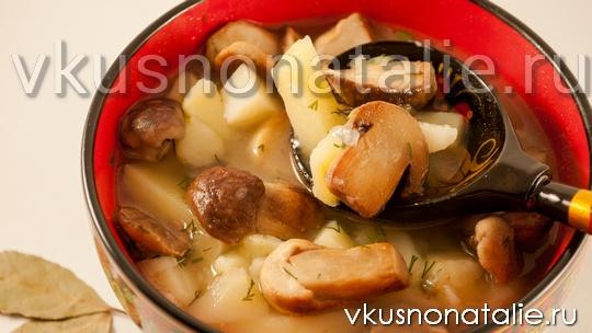 грибной суп из белых грибов рецепт