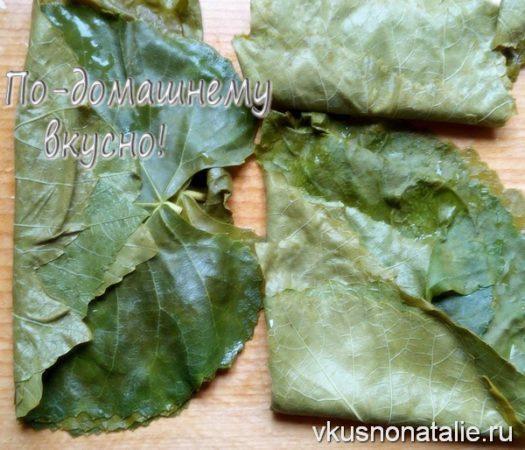 виноградные листья на зиму пошаговый рецепт с фото