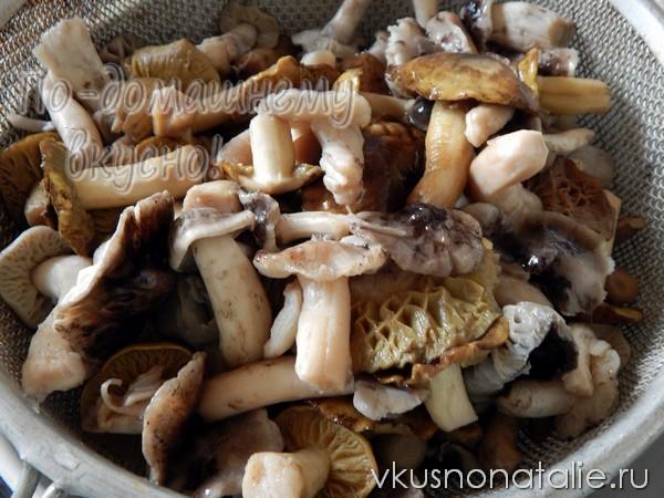грибы рядовки на зиму рецепт