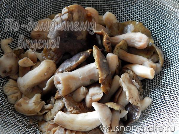 грибы рядовки на зиму замороженные пошаговый рецепт