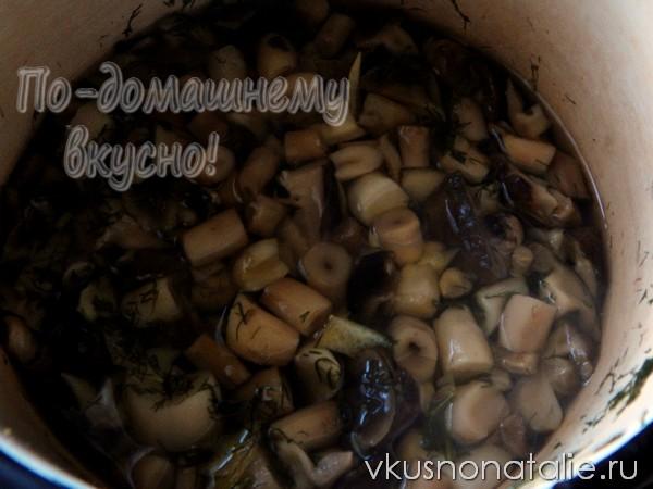 маринованные рядовки на зиму пошаговый рецепт