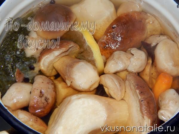 замороженные белые грибы на зиму рецепт с фото